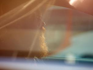 BIRGIT STOEVER : Gregor COLLIENNE