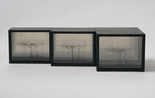 CHERRY AND MARTIN : Michael Stone, Untitled, 1968 (Photography into Sculpture)