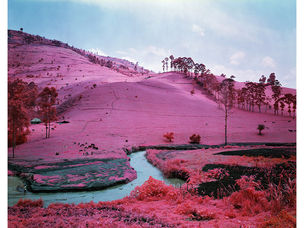INFRA : Photographs by Richard Mosse