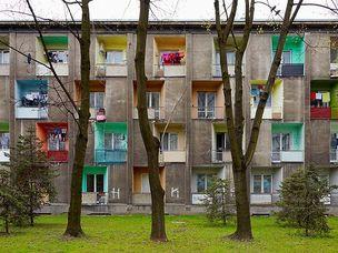BACK TO THE ROOTS : Arbeiten 1995 - 2010 by Goetz Diergarten