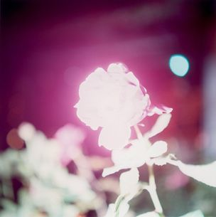KEHRER VERLAG : ILLUMINANCE by Rinko Kawauchi