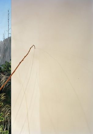 M+B GALLERY : ANTHONY LEPORE - New Wilderness (May 21 - June 18, 2011)