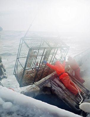 COREY ARNOLD : Fish-Work - The Bering Sea