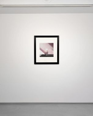 Sofia Coppola curates Robert Mapplethorpe, Galerie Thaddeus Ropac, Paris