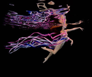 20LTD :  Howard SCHATZ