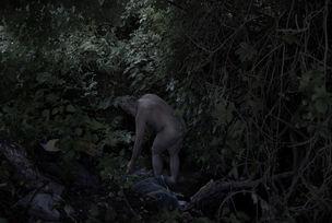 "EPAP Winner 2012 : Alessandro Imbriaco - ""The Garden"""