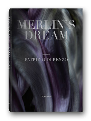 ROCKENFELLER & GOEBELS : Patrizio DI RENZO - MERLIN'S DREAM
