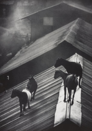 W. Eugene Smith, Retrospektive, Berlin