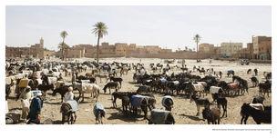 STEFAN SCHUETZ - Views of Africa