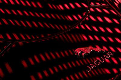 JAN FRIESE for Jaguar