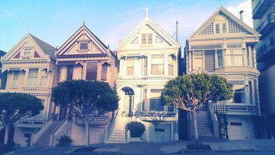 GOSEE : SAN FRANCISCO CITY