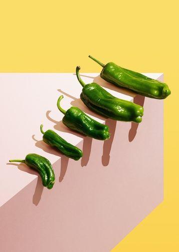 COSMOPOLA   Veggie Dicks by ILKA & FRANZ for guardianweekend