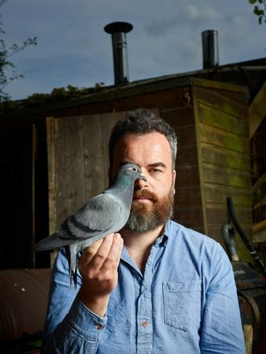 'Home to Roost' The Observer – Pigeon by Dan Burn-Forti c/o MAKING PICTURES