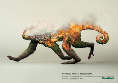 'Destroying nature is destroying life' Illusion & Analog/Digital for Robin Wood
