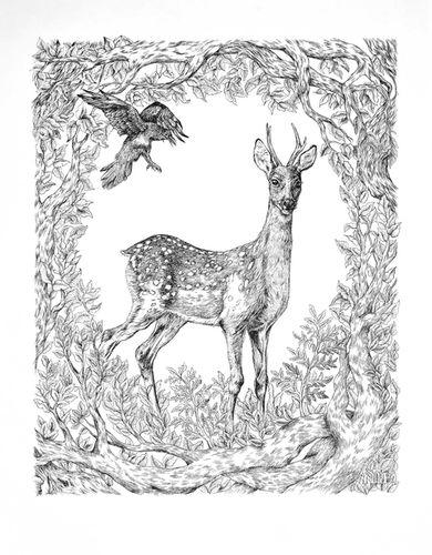 COSMOPOLA   Marie de Beaucourt   Deer & Crow