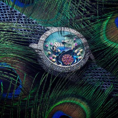 Peter Lippmann c/o PHOTOBY&CO for Gala Magazine