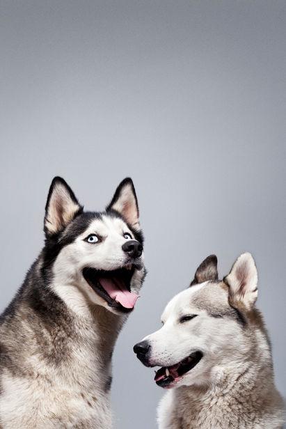 Ilka & Franz