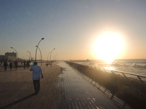 GOSEE : Tel Aviv Promenade
