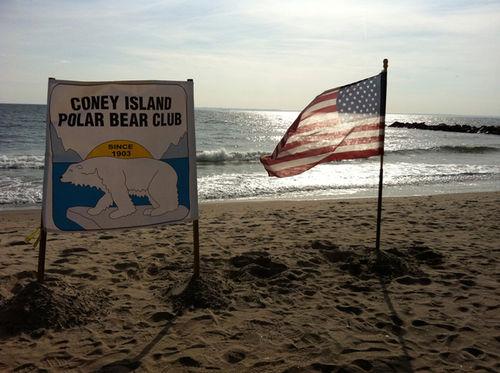 GOSEE NYC SPECIAL : POLAR BEARS