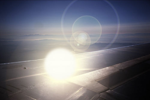 The Sun On The Wing