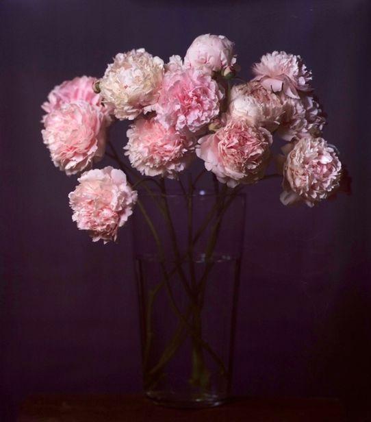 HEINO HEIMANN - Flowers One