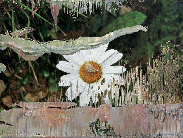 Museum Morsbroich : Gerhardt Richter *Uebermalte Fotografien* - 23.4.07