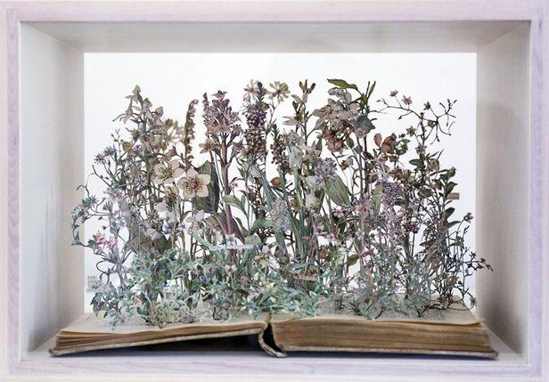 Book Worlds - nature and landscape photography book @Kerber Verlag