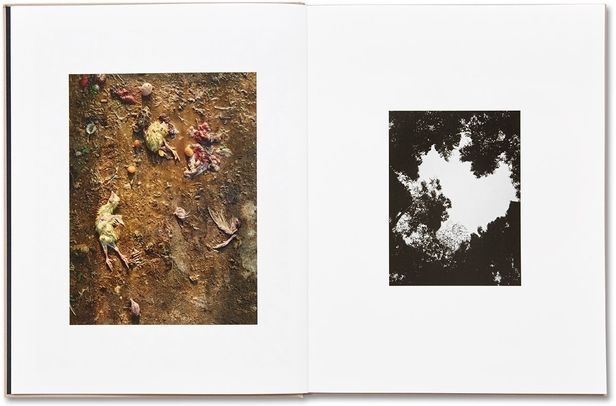 """""""Murder"""" © Guillaume Simoneau, published by MACK"""