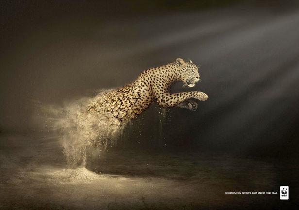 WWF campaign by Contrapunto BBDO