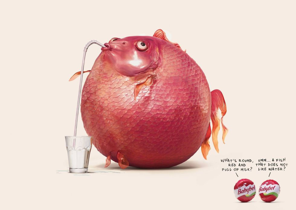 Babybel: Fish